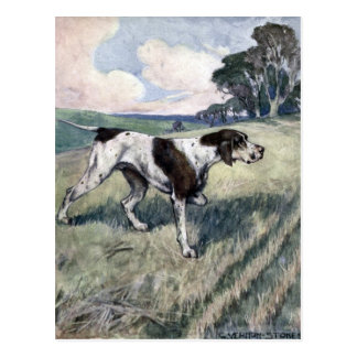 The Pointer or Setter Postcard