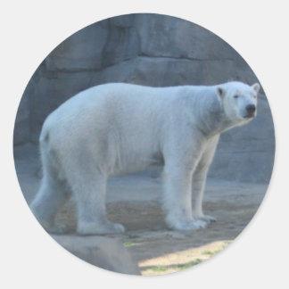 The polar bear classic round sticker