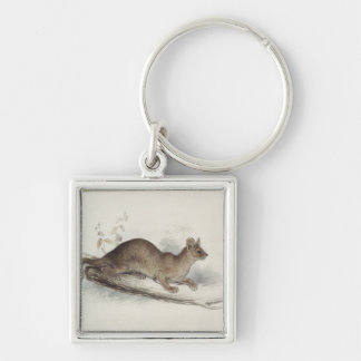 The Polecat, 19th century Keychain