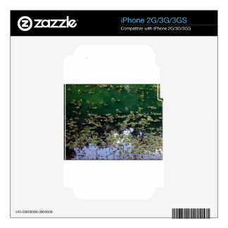 The Pond Decals For The iPhone 3G