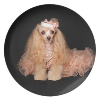 The Poodle Plate