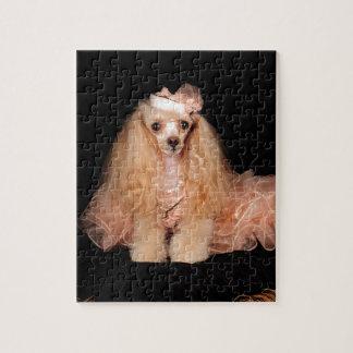 The Poodle Puzzle