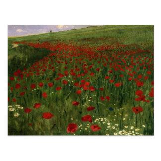 The Poppy Field, 1896 Postcard