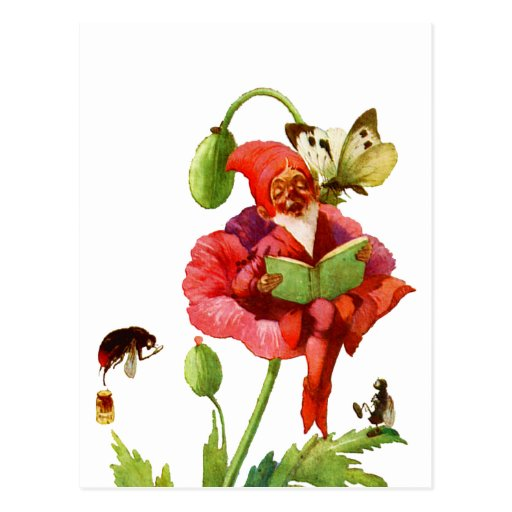 The Poppy Gnome Postcards