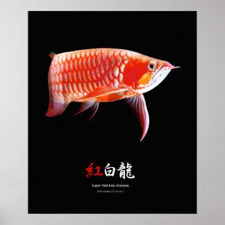 The poster of Super Red Arowana, No.01