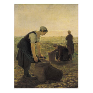 The Potato Harvest Postcard