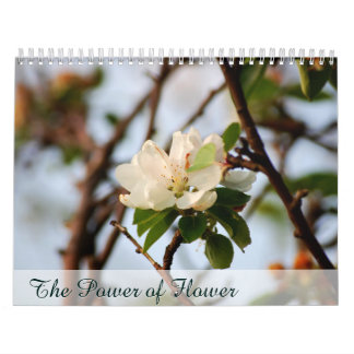 The Power of Flower Calendar
