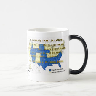 The Presidential Oath Says To Preserve and Protect Magic Mug