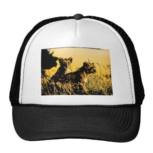 the pride  art2 mesh hat
