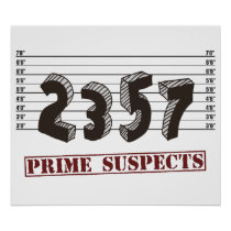 The Prime Number Suspects Poster