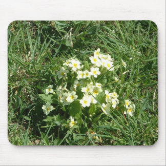 The Primroses Mouse Mats