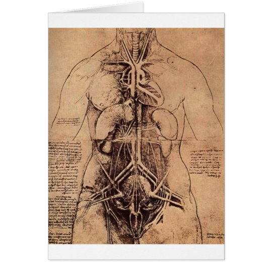 The Principle Organs and Vascular and Urino-Genita Card