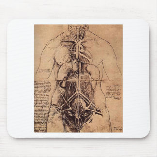 The Principle organs and vascular and Urino-genita Mouse Pad