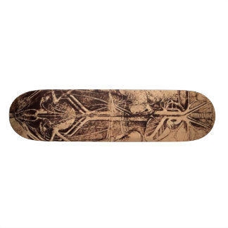 The Principle Organs and Vascular and Urino-Genita Skateboard Deck