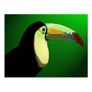 The Prismatic Toucan Postcard