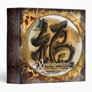 THE PROSPERITY CONNEXION : Art of Chinese Fengshui 3 Ring Binder