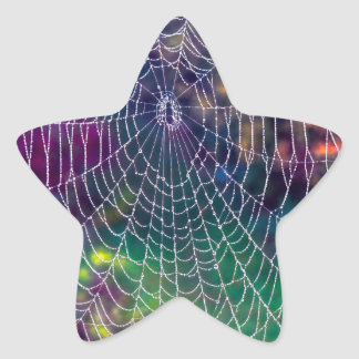 The Psychedelic Web Star Sticker
