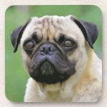 The Pug Dog Drink Coasters