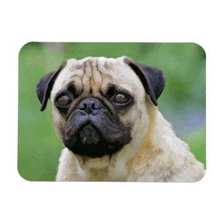 The Pug Dog Rectangular Photo Magnet