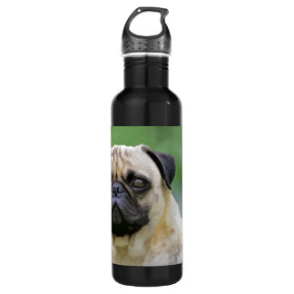 The Pug Dog Stainless Steel Water Bottle