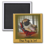 The Pug is in! 2 Inch Square Magnet
