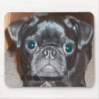 The Pug Mouse Pad