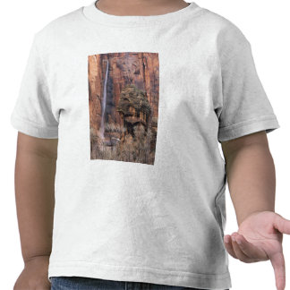The Pulpit and ephemeral waterfall 2 Shirts