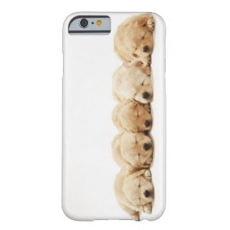 The puppies of the golden retriever barely there iPhone 6 case