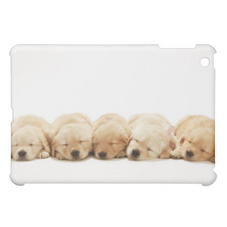 The puppies of the golden retriever iPad mini case