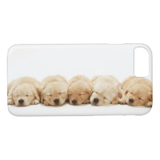 The puppies of the golden retriever iPhone 8/7 case