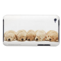 The puppies of the golden retriever iPod touch Case-Mate case