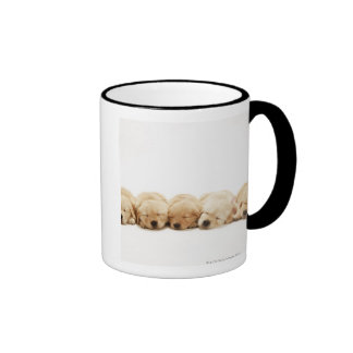 The puppies of the golden retriever coffee mugs