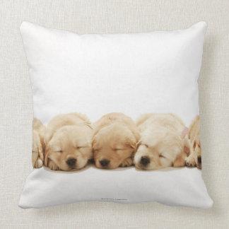 The puppies of the Golden Retriever Pillows