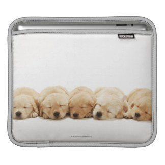 The puppies of the golden retriever sleeve for iPads
