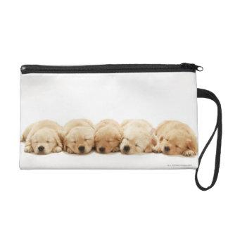 The puppies of the golden retriever wristlet purse