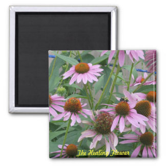 The Purple Coneflower 2 Inch Square Magnet