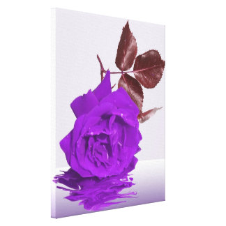 The Purple Rose Canvas Print