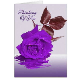 The Purple Rose Thinking of you Card