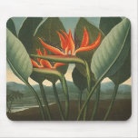 'The Queen (Bird of Paradise)' - Temple of Flora Mousepad