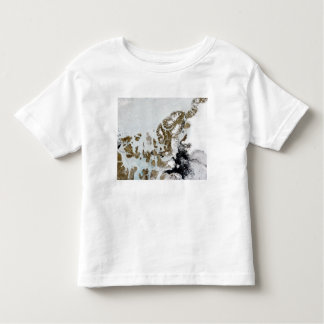 The Queen Elizabeth Islands 2 Toddler T-shirt