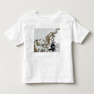 The Queen Elizabeth Islands 2 Shirt