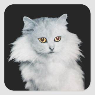 THE QUEEN OF WHITE CATS SQUARE STICKER