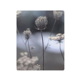 The Queens in Nature Metal Print