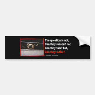 The question is not can they reason bumper sticker