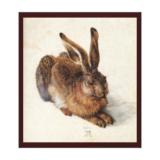 THE RABBIT ( Young Hare ) Canvas Print