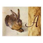 THE RABBIT ( Young Hare ) Monogram Postcard