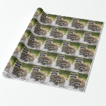 The Raccoon Couple Gift Wrap Paper