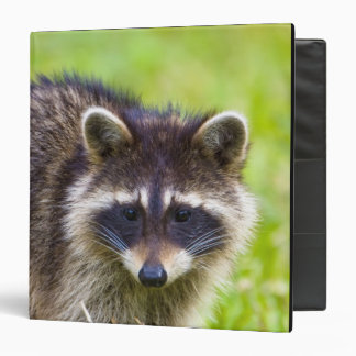 The raccoon, Procyon lotor, is a widespread, 2 3 Ring Binder