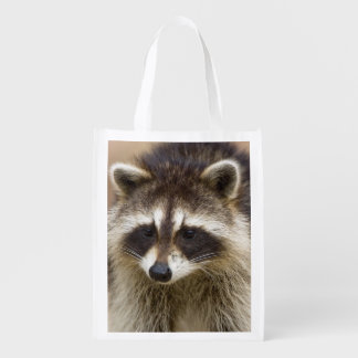 The raccoon, Procyon lotor, is a widespread, Grocery Bag