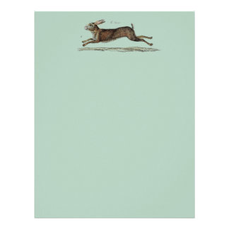 The Racing Hare at Easter Letterhead